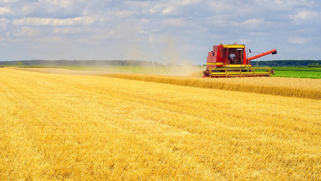 odszkodowanie za wypadek w rolnictwie anglia uk
